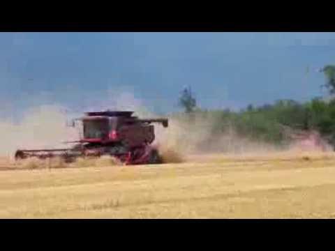 Żniwa w Stanach Zjednoczonych Piękne Maszyny Rolnictwo to duży interes w USA