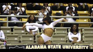Alabama State Stingettes