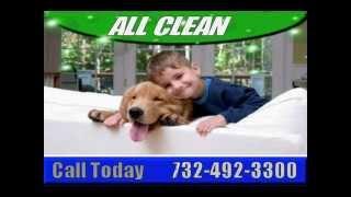 CARPET  TILE  UPHOLSTERY  CLEANING  MONROE NJ  SAVE$$  732-492-3300.