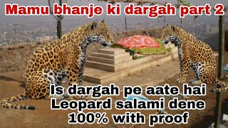 Is dargah pe aate hai leopard salami dene | Mamu bhanje ki dargah | part 2 | Thane dargah| #smrqvlog