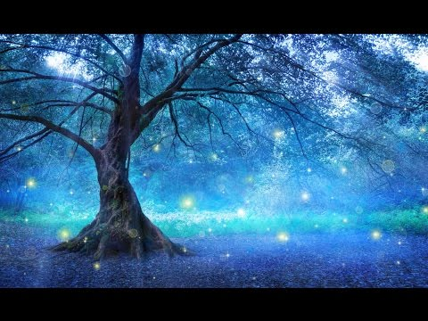 2 hours of peaceful relaxing nature instrumental music by Tim Janis