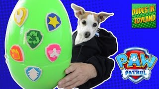 Dog opening PAW PATROL play doh surprise egg with human hands! playdough toy youtube videos for kids