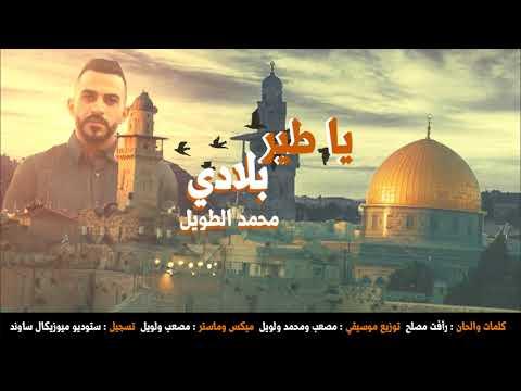 Xxx Mp4 محمد الطويل يا طير بلادي Muhamad AL Tawil Ya Tayr Biladi 3gp Sex