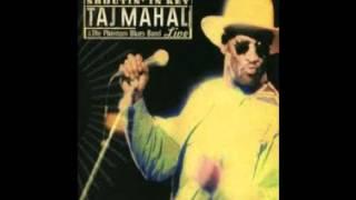 Taj Mahal  - every wind in the river