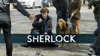 Gone to the dogs - Sherlock: Series 4 - BBC One