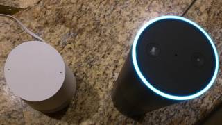 Alexa (Amazon Echo) and Google Home infinite loop conversation