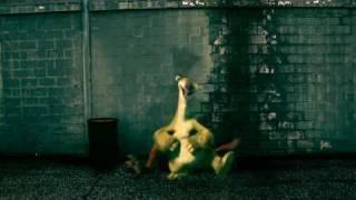 Ice Age 3 - Walk the dinosaur (animation)