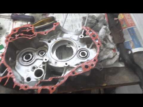 Flaviano Passo a Passo Desmontagem e Montagem Motor Titan 150