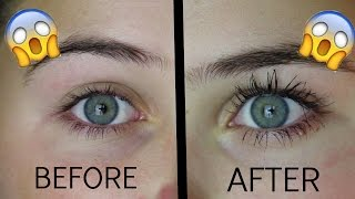 How To Grow Your Eyelashes In 1 Day!