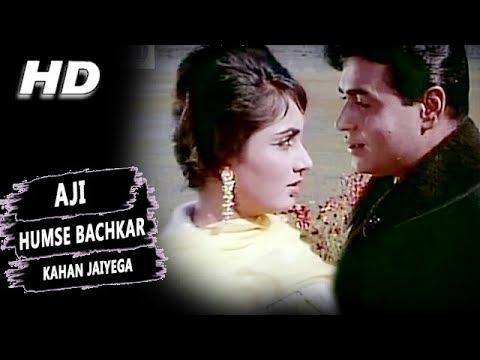 Xxx Mp4 Aji Humse Bachkar Kahan Jaiyega Mohammed Rafi Arzoo 1965 Songs Sadhana Rajendra Kumar 3gp Sex