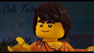 LEGO Ninjago | Cole Tribute | Wake me up ♪