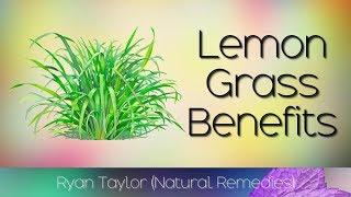 Lemongrass: Benefits and Uses