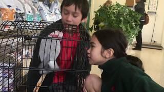 TAKING OUR BIRD TO THE VET | FAMILY VLOG