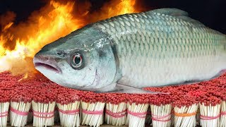 EXPERIMENT 50,000 SAFETY MATCHES vs FISH