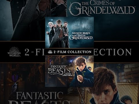Xxx Mp4 Fantastic Beasts 2 Film Collection 3gp Sex
