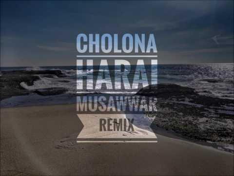 Tahsan - Cholona Harai (Musawwar Remix)