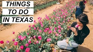 Spring Time Bucket List! Texas Tulip Field from the Netherlands | Hobo Ahle
