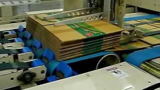 Flexo Folder Gluer In-line system