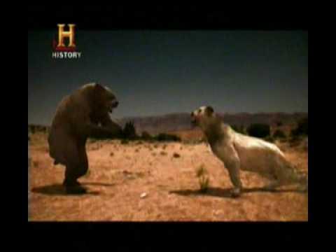 Mundo Jurásico Bestias de la era de hielo Parte 5 de 6