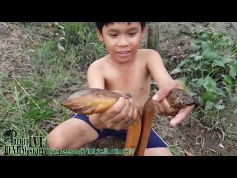 Primitive Hunting Technology - The Eels Trap with Bamboo Tube
