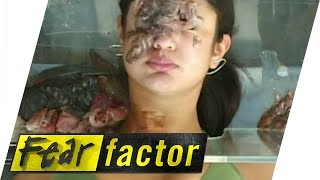 Swallowing Fish Guts   Fear Factor Extra