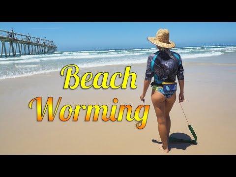 Xxx Mp4 Beach Worming How To Catch Beach Worms 3gp Sex