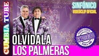 Los Palmeras - Olvídala | Sinfónico | Audio y Video Remasterizado Full HD | Cumbia Tube