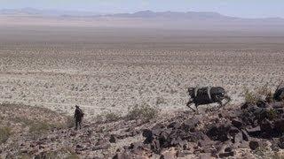 Legged Robot Testing in Desert