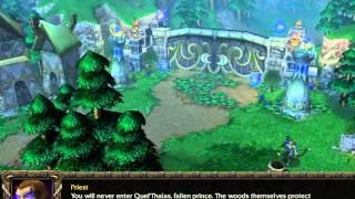 Arthas Story - Warcraft III