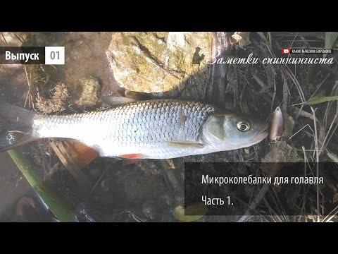 ловля белой рыбы на микроколебалки