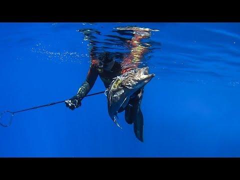 Pole Spearfishing in Greece vol.3 - 130 feet deep - Υποβρύχιο ψάρεμα με καμάκι  vol.3 ✔