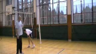 Volleyball spike training aid