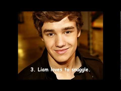 5 Liam Payne Facts about Girls