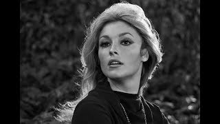 Unknown Shocking Facts About Sharon Tate    Pastimers
