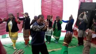 Pahari naati (Upper Shimla Kotkhai )
