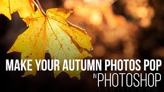 How to Make Your Fall Images Pop in Photoshop
