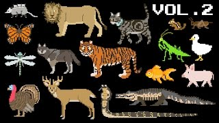 Animals Collection Volume 2 - Farm Animals, Mammals, Pets, Reptiles - The Kids