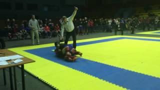 Wushu MMA Sanda