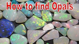 How to find Opals - Coober Pedy | Liz Kreate