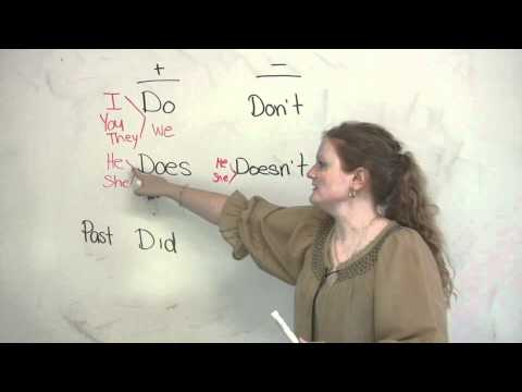 Basic English Grammar - Do, Does, Did, Don't, Doesn't, Didn't