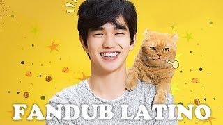 Gato Imaginario (상상고양이) Imaginary Cat Trailer Español Latino (Fandub)