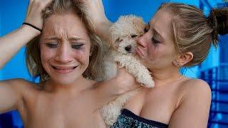 LOST DOG PRANK ON MY GIRLFRIEND (PUPPY)