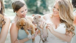 Bridal Party Poses with Rescue Puppies Instead of Bouquets | The Scene