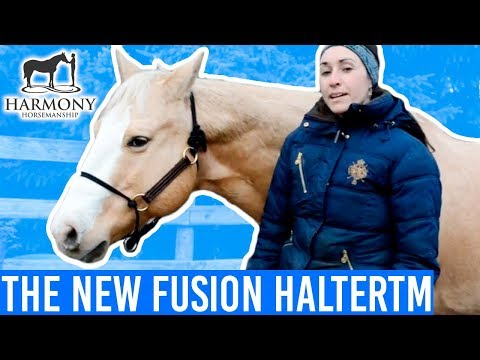 The new Fusion HalterTM