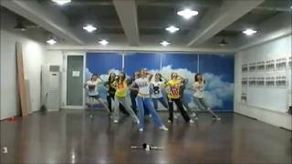 [HD] Genie (Mirrored Dance Practice) - SNSD [소녀시대]