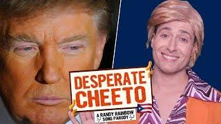 DESPERATE CHEETO - Randy Rainbow Song Parody