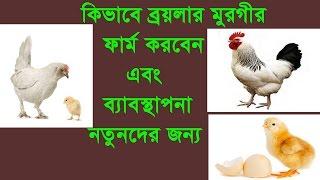পোল্ট্রি ফার্ম করুন স্বাবরম্বি হউন পর্ব -২ এর ২য় অংশ, How to start poultry farming (Brooding)
