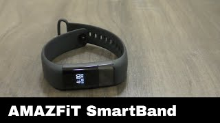 AMAZFIT Heart Rate Smartband review in Hindi - with ECG chip