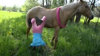 FAIL :'DDDD (HORSE)