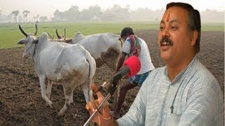 Organic Farming Zero Budget Farming Formula By Rajiv Dixit